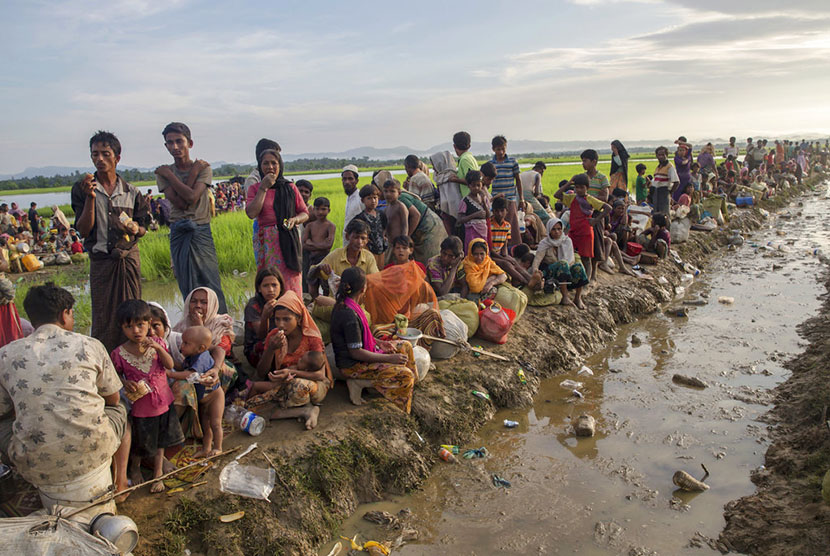 Thousands of Rohingya Muslims who fled from Myanmar were stuck at the border in Palong Khali, Bangladesh, on Tuesday (October 17).