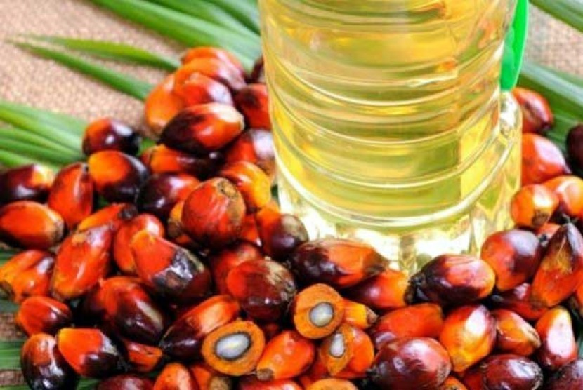 Palm oil. (Illustration)