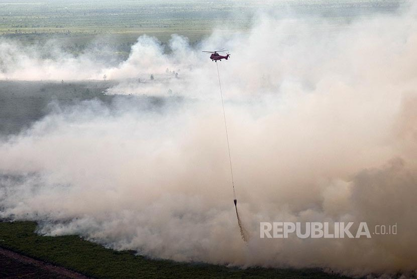 About 100 hectares of peatland in Tanah Putih District, Rokan Hilir, Riau, was on fire on Thursday (February 23).