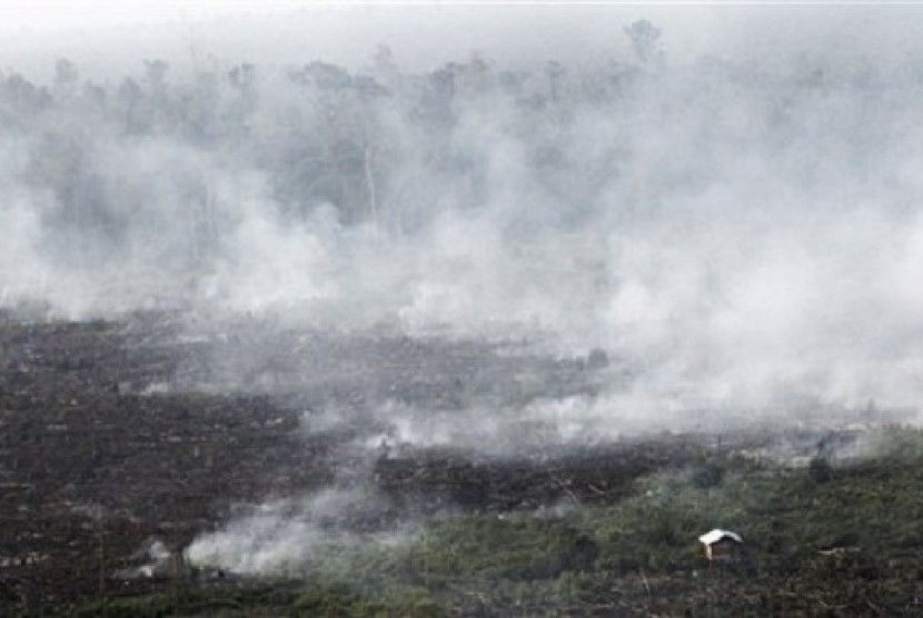 Smoke billows during a forest fires in Pelalawan, Riau province, Indonesia, as seen in this file photo on June 27, 2013.