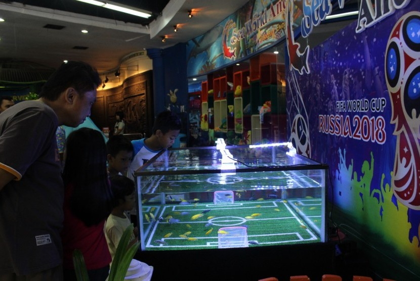 Tampilan Aquarium World Cup di Sea World Ancol, Rabu (13/6)