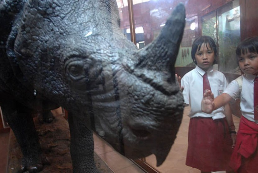Bogor's Zoology Museum was established in 1894 under the name of Landbouw Zoologish Laboratory. To commemorate its 122nd anniversary of the museum, the Indonesian Science Institution would hold various events, such as talk shows and field trips.